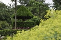 Gartenimpressione