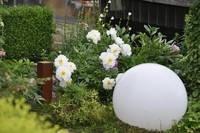 Lichtgestaltung im Garten