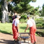 Rasenpflege im Frühjahr - eine Aufgabe für Profis