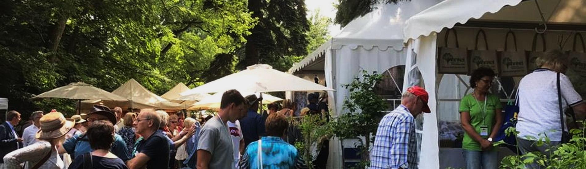 10. Odenwälder Country Fair