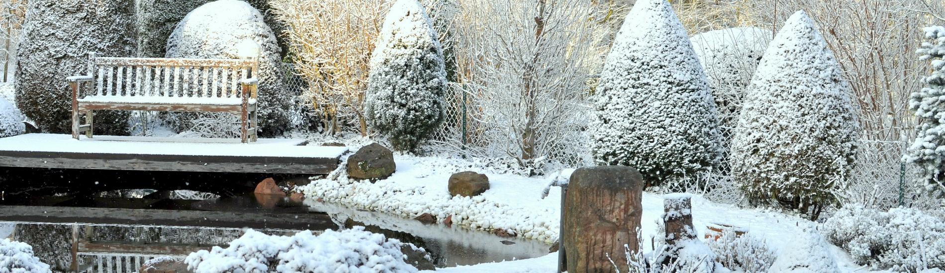 Winterzeit – Gartenzeit